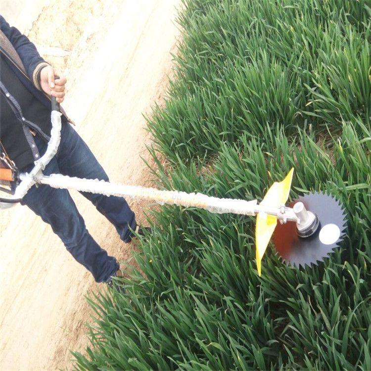 剪草机图片 草坪修剪机