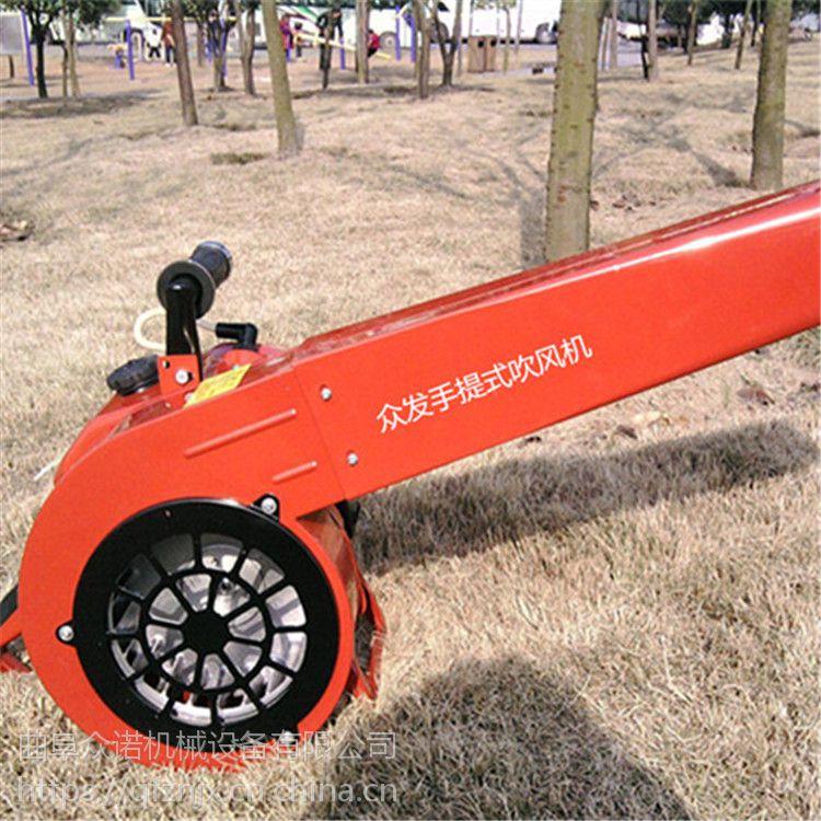 路面清吹尘机吹雪机小型汽油背负式吹风机