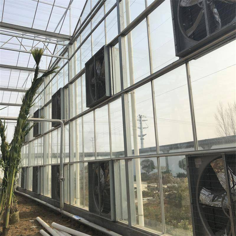 金沣 新型农业温室大棚 蔬菜温室大棚一亩造价 玻璃智能温室大