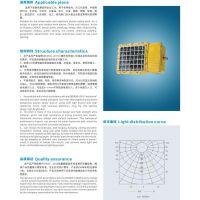 厂家直销长方型LED防爆灯/正白免维护LED灯/24W/品质保证