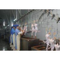 高效优质屠宰机械公司,诸城中昊机械(图),高效优质屠宰机械设备