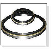供应不锈钢双唇油封 PTFE油封70-90-10