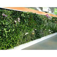 仿真植物墙室内外立体垂直绿化墙仿生墙面装饰假绿植墙景观定做草墙