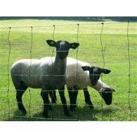 养殖护栏网围网,纯生态养殖护栏网,镀锌浸塑养殖护栏网批发/安平欧齐护栏网