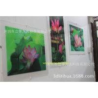 供应3D立体装饰画,立体贴画,立体广告宣传画,立体墙画,PET三维画