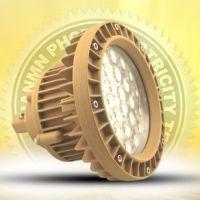 供应供应40W .GMD510 24V .36V..54V. led防爆灯外壳 防爆灯具 平台状态灯