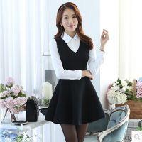 东大门秋季新款韩版气质修身显瘦连衣裙 女式衬衫两件套装 套装
