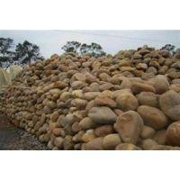 天然锰砂滤料执行标准,光大净水应用高效(图),有谁需要天然锰砂滤料