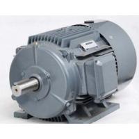 西门子6极18.5KW贝得电机1TL0001-2AC43-3AA5卧式安装