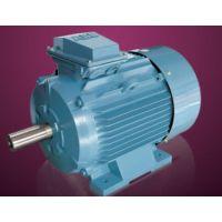供应销售高压电机 石河子大速电机 荣成华力电机-高压电机专家