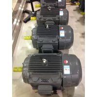 供应上海德东电机厂YE2 180L-4 22KW 卧式电机 三相异步电动机