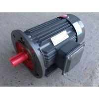 上海德东电机 厂家供应 YE2-315M-6 90KW B35 三相异步电机