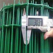 厂家热销***广东绿色养殖铁丝网 果园/圈地铁丝网 浸塑养鸡围栏