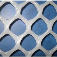 养殖鸭子幼苗小鸭用多大孔的塑料网_清洁环保塑料平网养殖网批发_安平上善