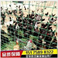安平养殖养鸡铁丝网 散养鸡铁丝网规格/价格
