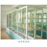 广东广视通专业提供优质的标本柜,动植物标本柜