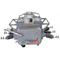 供应专业厂家生产ZW20-12户外柱上真空断路器