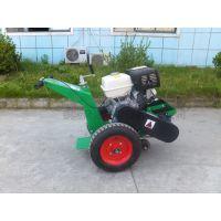 清缝机厂家低价供应新型隆顺LS-350B路面清缝机
