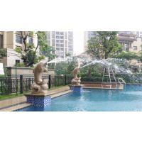 惠州游泳池设备维修于改造