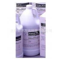 酸性苯酚消毒剂价格 Steris-646608