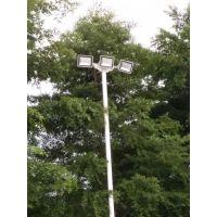 东莞康腾室外体育场灯杆安装 200w250w篮球场灯柱 灯光穿透力强