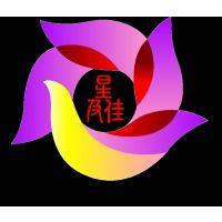 广州星及佳舞台设备有限公司