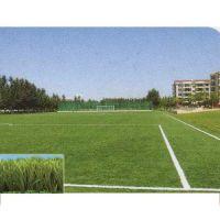 专业生产塑胶跑道,跑道胶水及人造草坪,硅PU球场,EPDM幼儿园