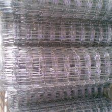 养鸡铁丝围栏批发广州荷兰网 养殖铁丝围栏网 浸塑荷兰网热销品牌