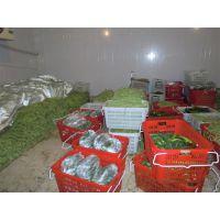 新疆石河子市蔬菜保鲜库建设