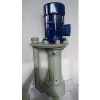 耐酸碱立式液下泵 防腐蚀液下泵 高温立式液下泵 塑料立式液下泵 长轴立式液下泵STH-40SK-1