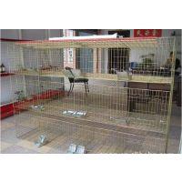 三层鸽笼怎么组装,镀锌鸽子笼批发,鸽笼都有什么,咨询13383380113李