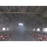 河南郑州肉牛养殖场_河南郑州肉牛养殖需要什么样的消毒设备比较好图片图片大全 ...