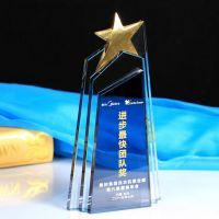 定做水晶工艺品 水晶奖杯奖牌定做商务礼品 定制比赛颁奖礼品 刻字 无锡礼品定制