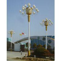高碑店市广场中华灯照明 农村小区照明太阳能路灯 太阳能LED庭院灯