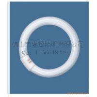 供应欧司朗 T9环形管 OSRAM 22W/765环形灯管
