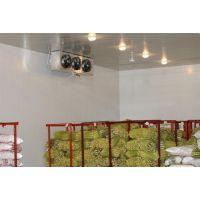 北京果蔬冷库安装,冷联制冷水果、蔬菜保鲜库建造公司