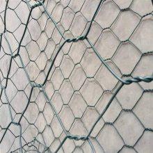 石笼网价格 安平石笼网 镀锌格宾网