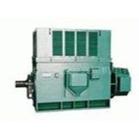 西玛大型电机Y7101-16 630KW 6KV 三相异步电