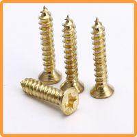 中山黄铜螺丝钉厂 合页螺钉装饰螺丝 定做特殊铜自攻螺钉