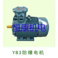 YB3隔爆型三相异步电动机