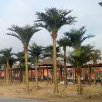 东莞森林厂家直销仿真大王椰子树 合成树脂工艺品 人造室外大型椰子树 室外景观造景玻璃钢椰树