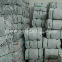 专业生产 常用型有提手 无纺植树袋60 无纺布种植袋