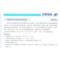 高性能长寿命 齐鲁电缆 阳谷电缆电线 WDZ-GYJS(F) 铠装 无铠装辐照交联聚乙烯