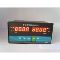 多回路显示控制仪,水位液位显示仪表