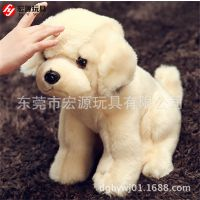 厂家来图来样定做 超萌毛绒泰迪狗狗 来样生产塑胶眼 塑胶鼻子狗