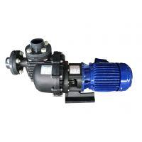 羊城牌|塑料自吸耐酸碱泵|40022H|广东大头泵|广州羊城水泵业|东莞泵业|深圳水泵厂