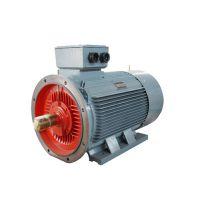 上海电机YE2系列高效率三相异步电动机YE2-180M-2-22KW