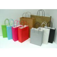苍南纸袋手提袋印刷厂家/温州苍南手提袋纸袋印刷厂/温州手提袋纸袋印刷厂
