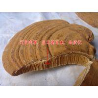 广西赤灵芝多少钱一斤