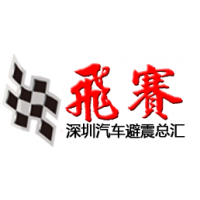深圳市飞赛汽车科技有限公司
